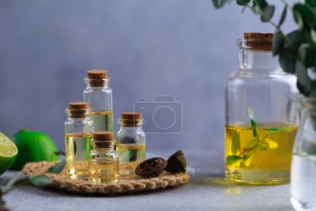 Photo pour Boîtes en verre avec huile essentielle d'eucalyptus sur feuilles de table grises dans de la chaux de vase - image libre de droit