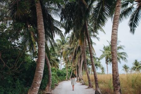 Foto de Vista posterior de chica caminando entre palmeras en Ukulhas island, Maldivas - Imagen libre de derechos