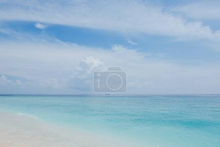 Photo for Beautiful seascape and sandy beach at Thoddoo island, Maldives - Royalty Free Image