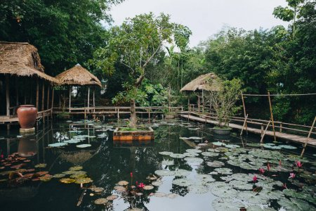 wooden footbridge and beautiful lotus flowers in pond in Hue, Vietnam