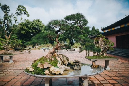 Photo for Bonsai tree and decorative pond in Hue, Vietnam - Royalty Free Image