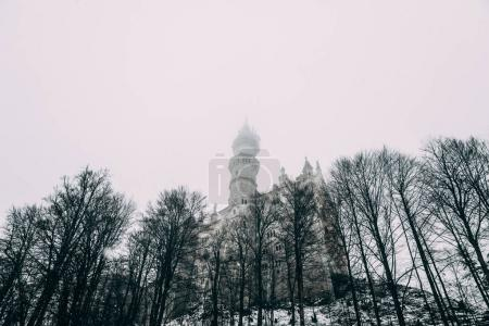 Photo for FUSSEN, GERMANY - FEBRUARY 19, 2018: low angle view of beautiful medieval neuschwanstein castle in fog - Royalty Free Image