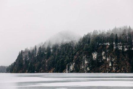 Photo pour Beau paysage tranquille avec lac de montagne gelé et des arbres sur le rivage à la brume, fussen, allemagne - image libre de droit