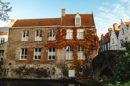 Photo for Beautiful old house with ivy on wall near canal and bridge in brugge, belgium - Royalty Free Image