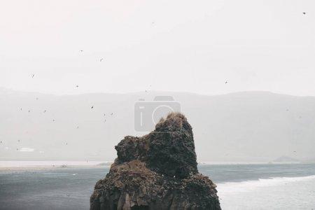 Photo pour Macareux sur la belle formation rocheuse dans l'eau près de la côte glaciaire, vik dyrholaey, plage reynisfjara, iceland - image libre de droit