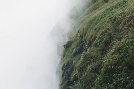 Photo pour Herbe verte, mousse, rochers et petites fleurs jaunes dans le brouillard, Dettifoss, iceland - image libre de droit