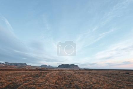 beautiful icelandic landscape with grassy plain and rocky mountains