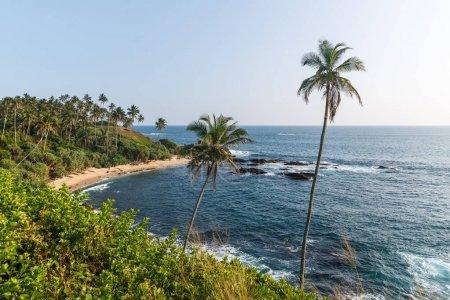 Foto de Hermosa vista panorámica de la costa con Palma árboles, sri lanka, mirissa - Imagen libre de derechos