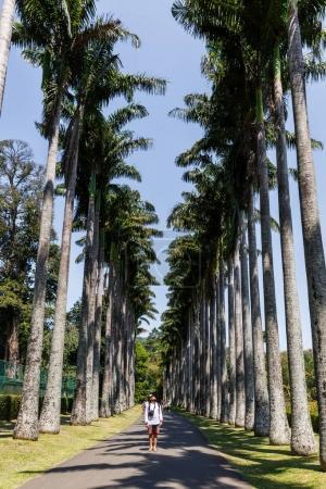 Photo for SRI LANKA, KANDY - JAN 17, 2017: tourist standing on path and looking at palm trees, sri lanka, kandy - Royalty Free Image