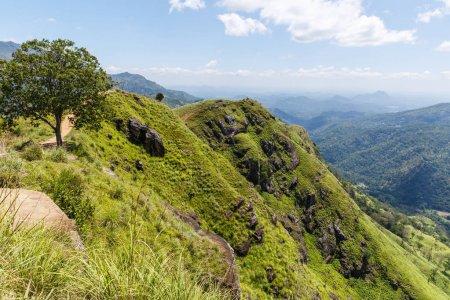 Photo pour Ella, au Sri Lanka - 17 janvier 2017: belle vue panoramique des montagnes recouvertes de plantes vertes et ciel nuageux, Asie - image libre de droit