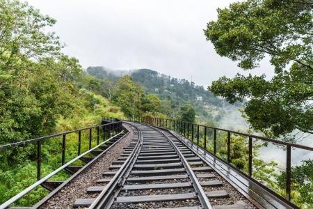 Photo for Scenic view of green trees and empty railway road, sri lanka, ella - Royalty Free Image