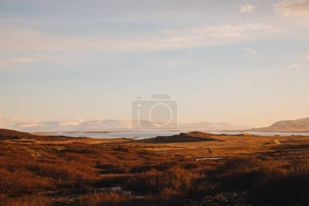 Photo for Beautiful icelandic landscape with dry grass on coast and scenic mountains on horizon - Royalty Free Image