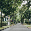 Urban scene of street with green trees and buildin...
