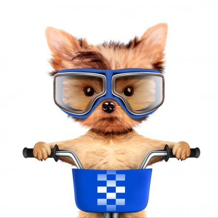 Adorable puppy sitting on a bike with googles