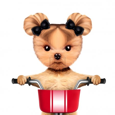 Adorable doggy sitting on a bicycle with basket