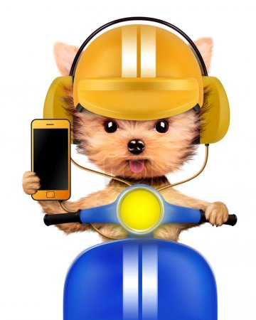 Photo for Funny puppy sitting on a motorbike and wearing helmet, isolated on white. Delivery concept. Realistic 3D illustration of yorkshire terrier - Royalty Free Image