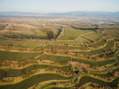 Aerial view of landscape with green fields on tiers, Germany