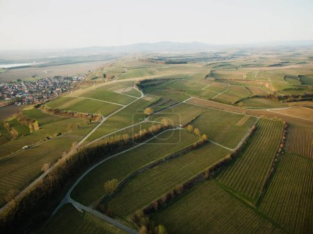 Aerial view of majestic landscape with green field, Germany