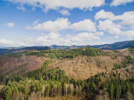 Photo for Aerial view of majestic landscape with pine forest and cloudy sky, Germany - Royalty Free Image