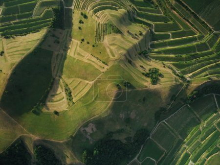 full frame shot of agricultural fields and hills from bird eye view, europe