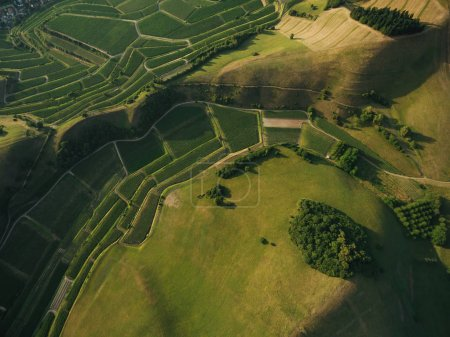 Photo for Aerial view of agricultural fields and green hills, europe - Royalty Free Image