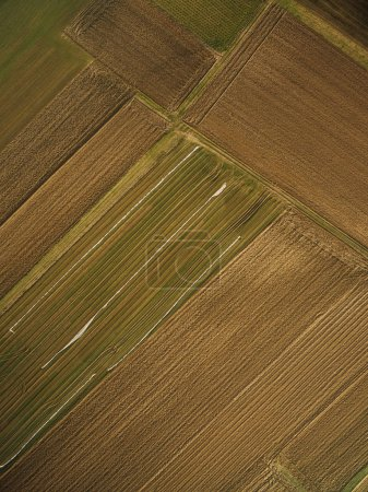 Photo for Aerial view of rows of agricultural fields, europe - Royalty Free Image