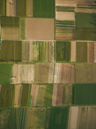 Photo for Aerial view of agricultural fields with power line, europe - Royalty Free Image