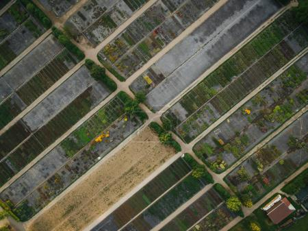 Photo for Aerial view of rows of agricultural fields and farmer house, europe - Royalty Free Image