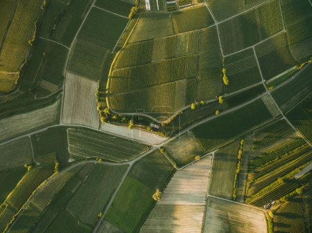 Photo for Aerial view of beautiful agro fields in evening, europe - Royalty Free Image