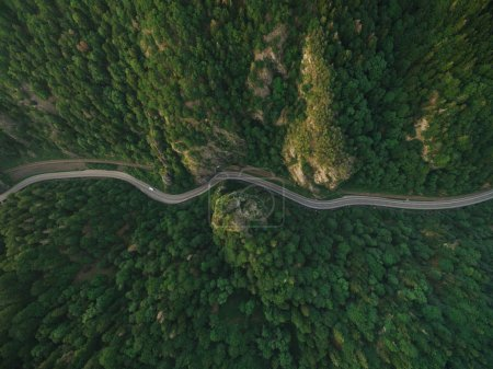 Photo for Aerial view of road in tranquil mountain forest - Royalty Free Image
