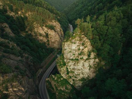Photo pour Vue aérienne de la route dans la belle forêt de montagne - image libre de droit