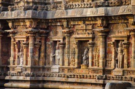 Photo pour Idoles sculptées sur la paroi intérieure du Temple d'Airavatesvara, Darasuram, Kumbakonam. Architecture de temple de Tamil hindou Shiva, construit par Rajaraja Chola Ii au XIIe siècle EC. Patrimoine mondial de l'UNESCO - image libre de droit