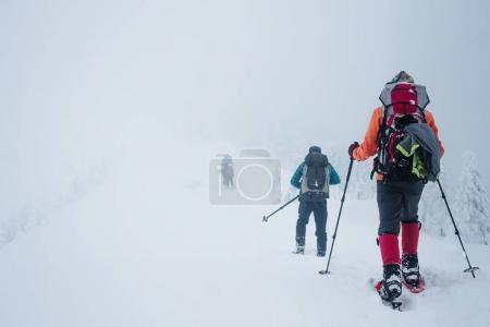 Photo pour Gens avec des sacs à dos dans les montagnes de Gorgany hiver - image libre de droit