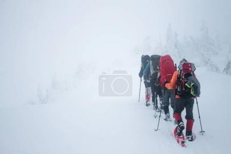 Photo pour Escaliers avec sacs à dos marchant dans les montagnes de Gorgany pendant le blizzard - image libre de droit