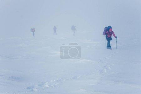 Photo pour Des alpinistes à peine visibles pendant le blizzard dans les montagnes de Gorgany - image libre de droit