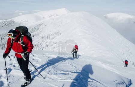 Photo for Team of climbers behind leader in Gorgany mountains - Royalty Free Image