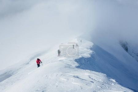 Photo for Chain of climbers walking in Gorgany mountains - Royalty Free Image