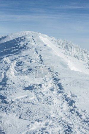 Photo pour Tranquille hiver Carpates paysage de montagnes - image libre de droit