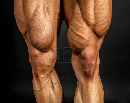 Photo for Detail of male bodybuilder front leg muscles on black background. Quadriceps and tibialis anterior. - Royalty Free Image