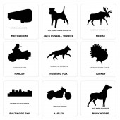 Set Of 9 simple editable icons such as buck horse harley baltimore sky