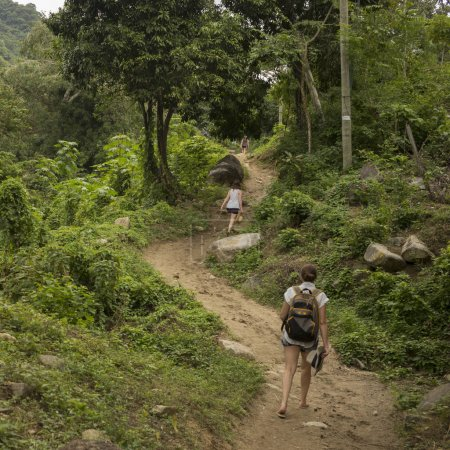Women hiking on trail in forest, Yelapa, Jalisco, Mexico