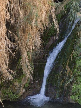 Water falling from rock, En Gedi Nature Reserve, Judean Desert, Dead Sea Region, Israel