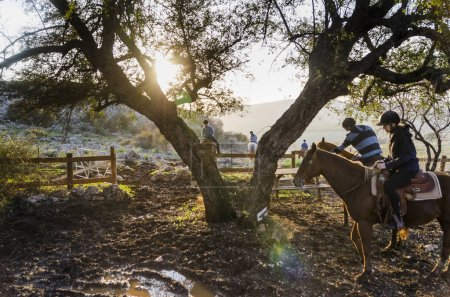 Photo for Tourists riding horses, Galilee, Israel - Royalty Free Image