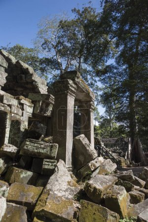 Ruins of Ta Prohm Temple, Angkor Archaeological Park, Krong Siem Reap, Siem Reap, Cambodia