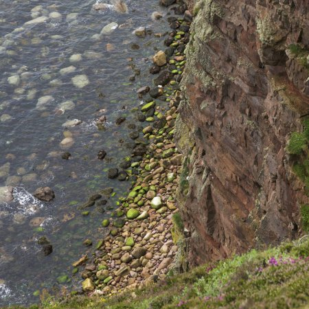 Rock formations at coast, Duncansby Head, Caithness, Scottish Highlands, Scotland