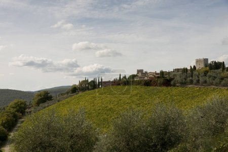 Scenic view of houses in village with vineyard, Chianti, Tuscany, Italy