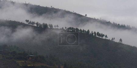 Photo pour Vue aérienne du brouillard sur la colline, Paro, Paro District, Paro Valley, Bhoutan - image libre de droit
