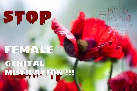 Stop female circumcision,  genital mutilation