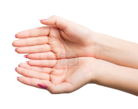 Photo for Woman Hands gestures on over white background - Royalty Free Image