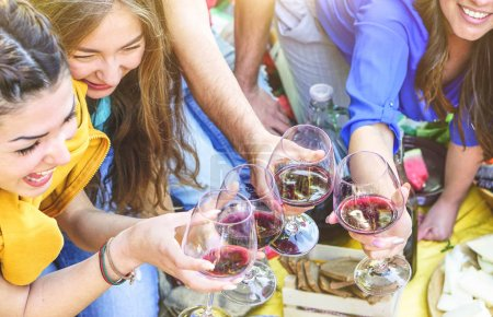Group of happy friends making a picnic toasting red wine glasses - Young people enjoying and laughing together drinking and eating outdoor - Friendship, youth, lifestyle concept